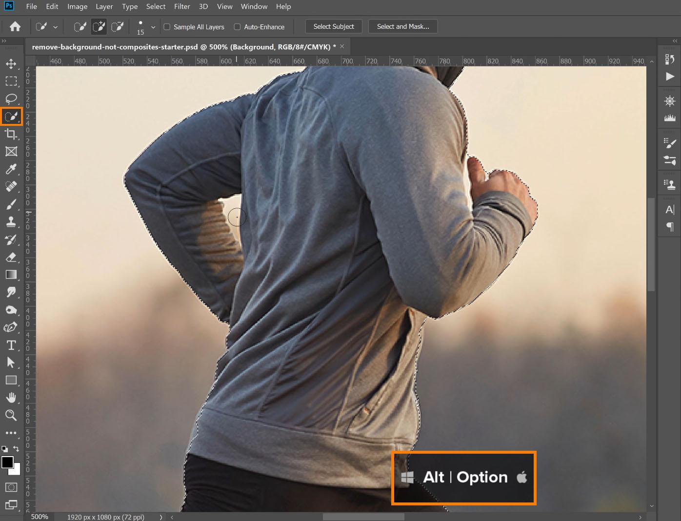 hold Alt (Windows) or Option (macOS)