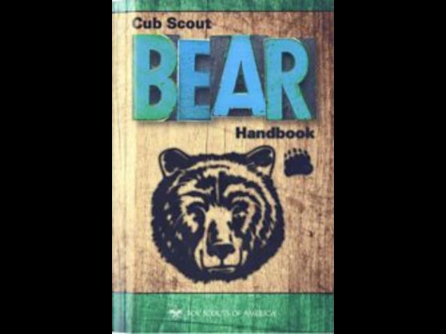 book bear.png
