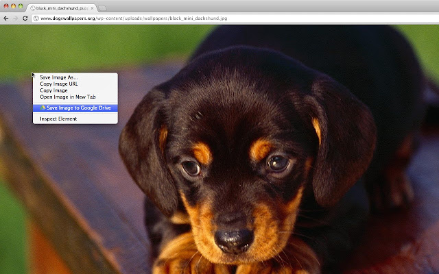 Save to Google Drive chrome extension