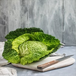 Cabbage is vegetable