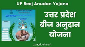 UP Beej Anudan Yojana | उत्तर प्रदेश बीज अनुदान योजना