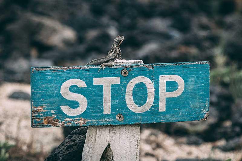 Stop Loss é a principal arma dos Traders.