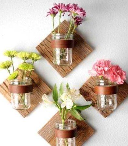 plantas de jarro