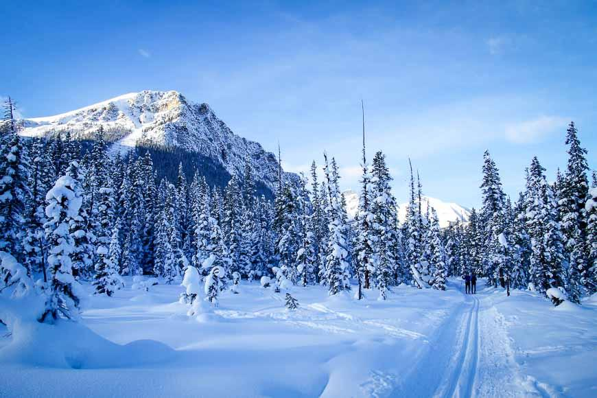 Cross-country skiing on the Fairview Trail