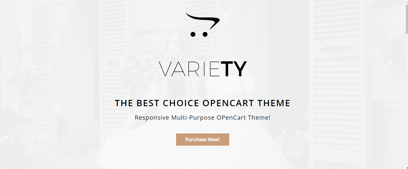 Variety - Accessories car opencart theme