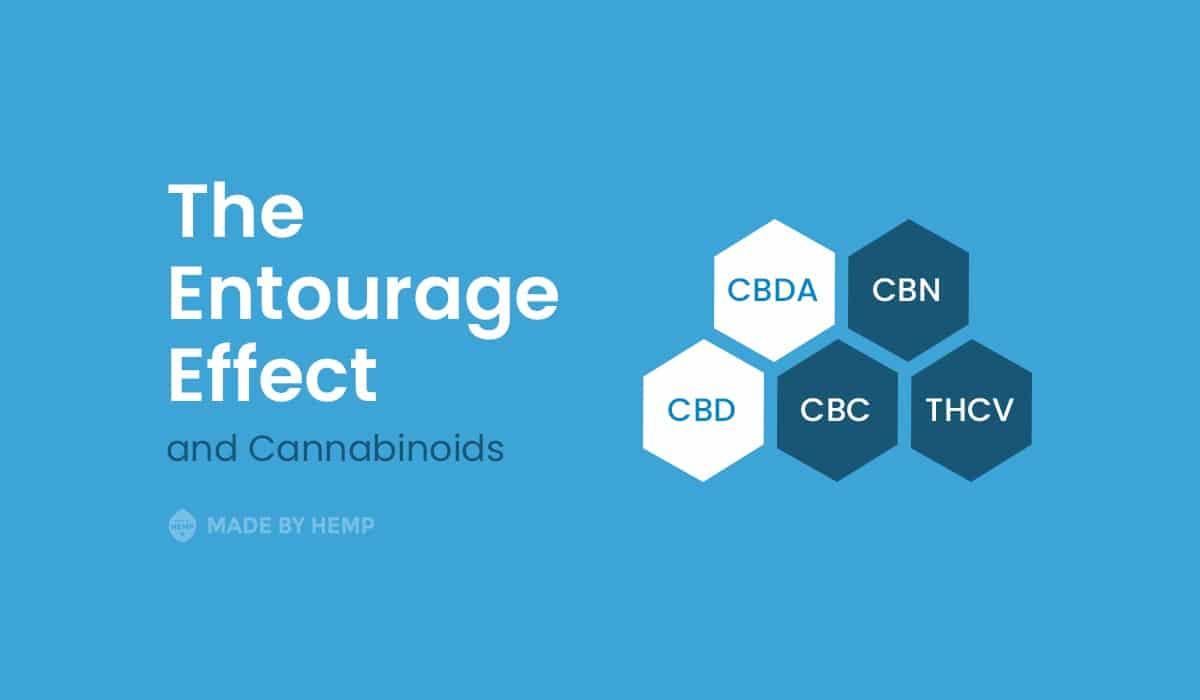entourage effect cannabinoids
