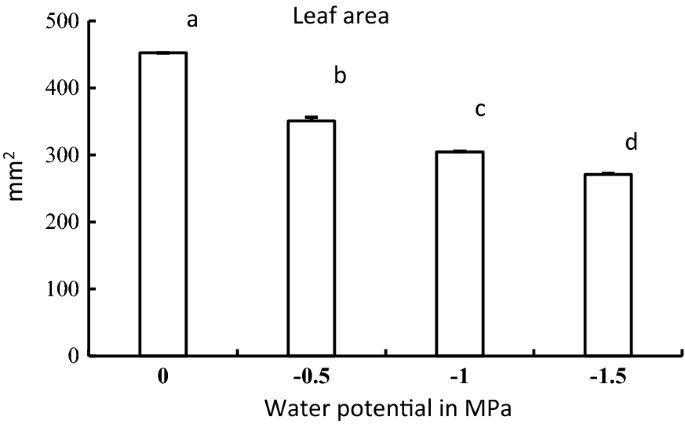 Growth response of Moringa oleifera (Lam) to water stress and to arid  bioclimatic conditions | SpringerLink
