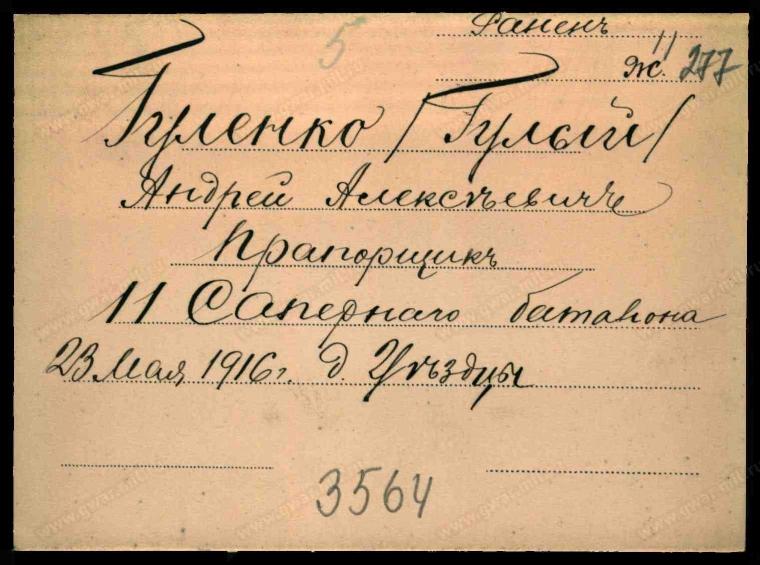 Документ времен Первой мировой войны с упоминанием о ранении Андрея Гуленко (Гулого)