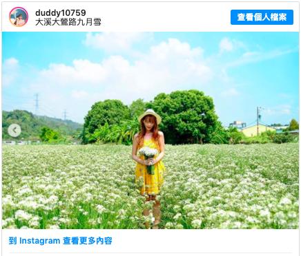 台灣賞花景點 花海 彰化 桃園 台灣景點 九月賞花 韭菜花