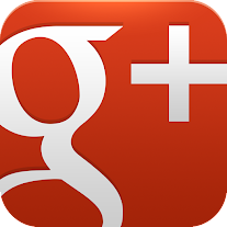 Follow Google Plus