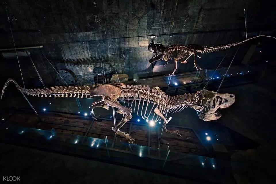 宜蘭驚喜博物館 - 瘋狂夢想藝術園區
