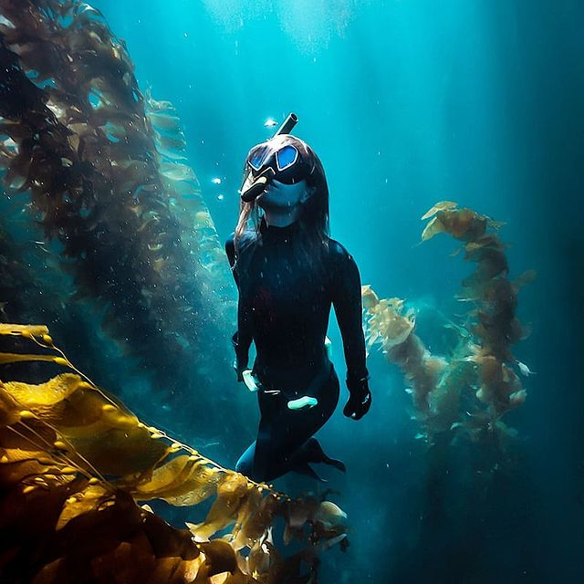 Photo by John Kowitz  Photographer in Catalina Island with @visitcalifornia, @dez.fj, @catalinaexpress, @visitcatalinaisland, @everydaycalifornia, @bluuespace, @freediveinternational, @hellocaliforniamag, @freediveearth, @wildcalifornia_, @spearfish.and.freedive.world, @freediverlife, @freedivers_united, @divemag, @california, @girlsthatfreedive, @cafreedivers, @thefreedivegirls, @catalina_scuba, and @freediversclub. Image may contain: one or more people and water.