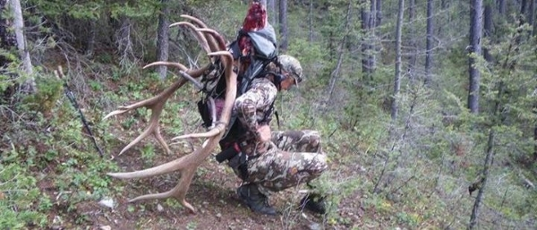 Elk Hunting Backpacks