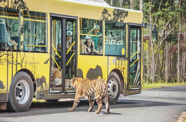 Safari Phú Quốc chắc chắn là một điểm đến hấp dẫn và lý tưởng nhất