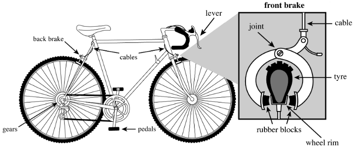 A bicycle brake uses a lever and cable to cause two rubber blocks to clamp onto the side of the wheel. The bicycle rider applies a force on the brake lever to make the system work.
