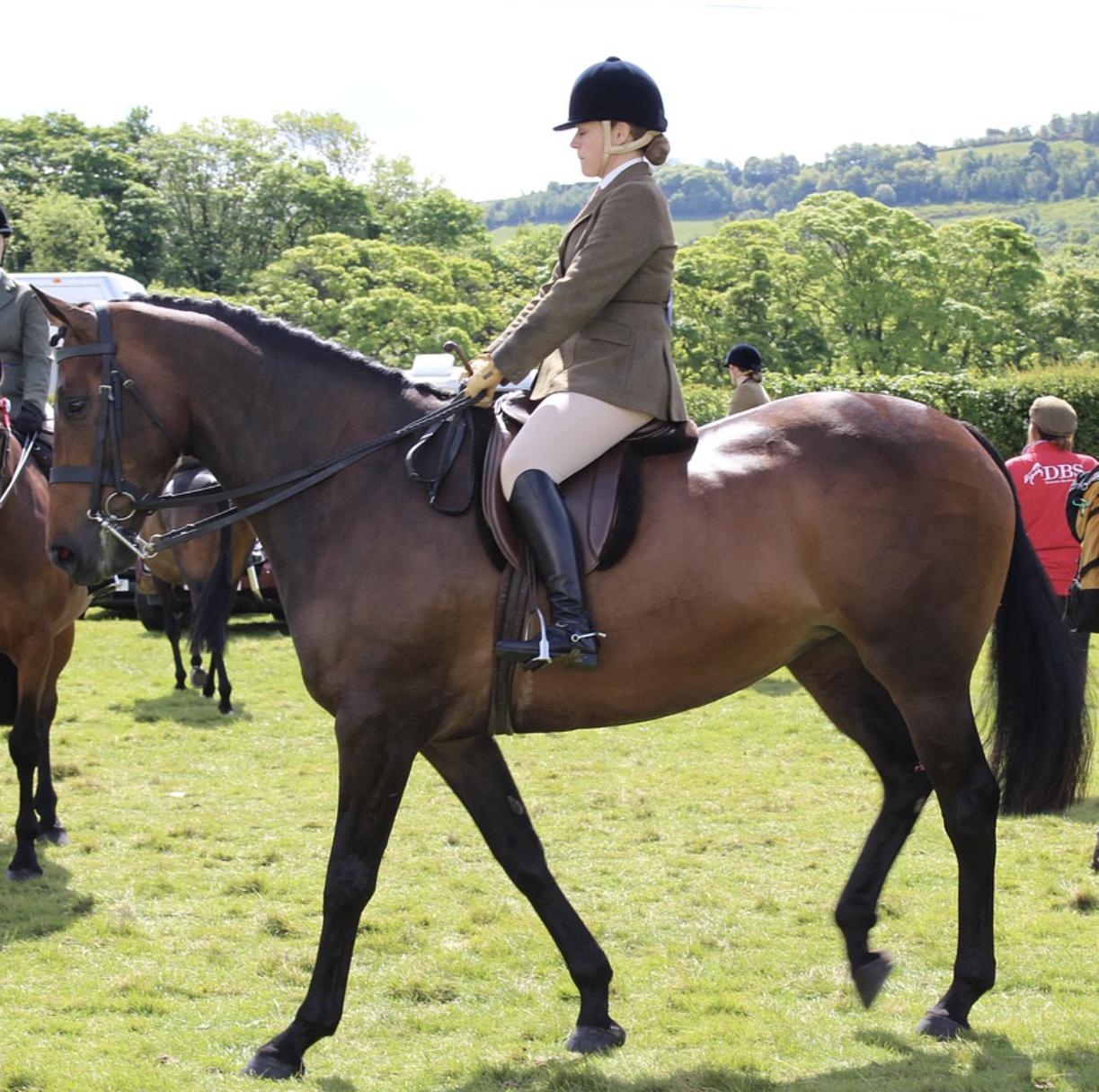 Woman rides a bay horse at a show
