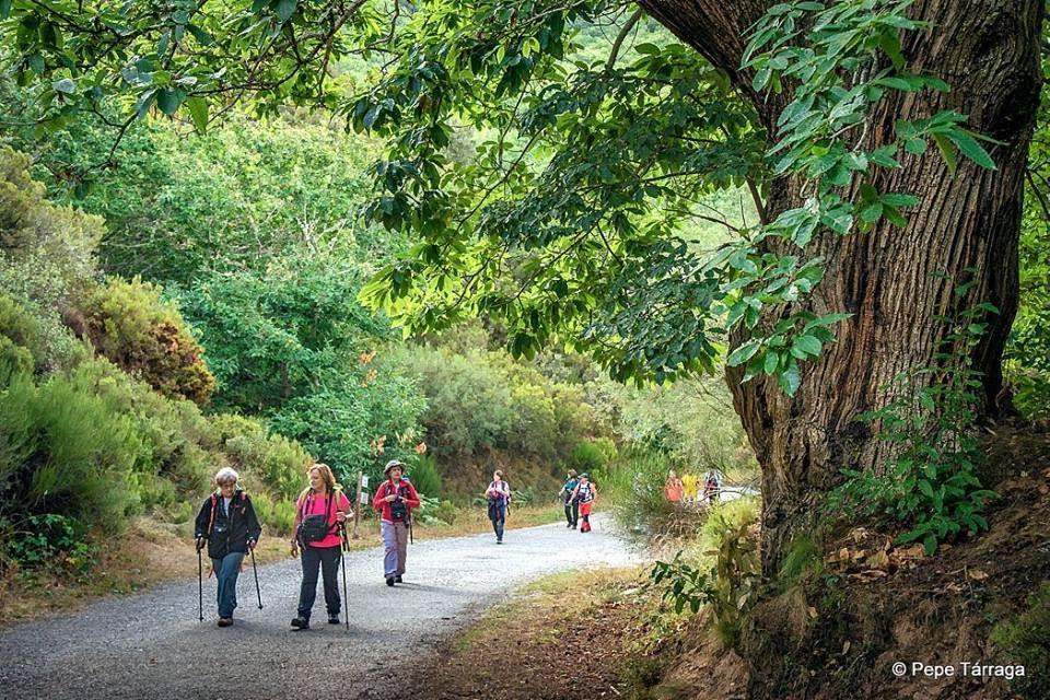 La imagen puede contener: una o varias personas, personas montando en bicicleta, árbol, planta, exterior y naturaleza