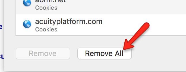 Safari Remove All Website Data