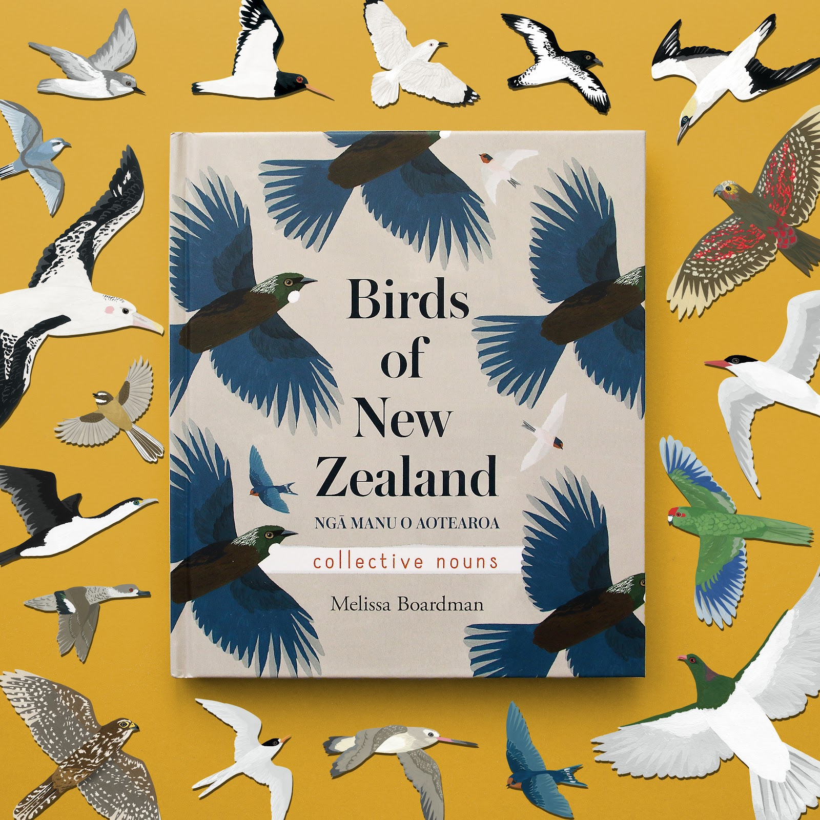 A close up of Birds of New Zealand