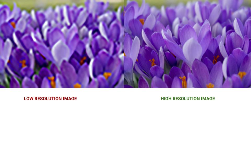 On the left, purple pixelated flowers display. They are out of focus and not easy to see. Text below the image reads: Low Resolution Image. 