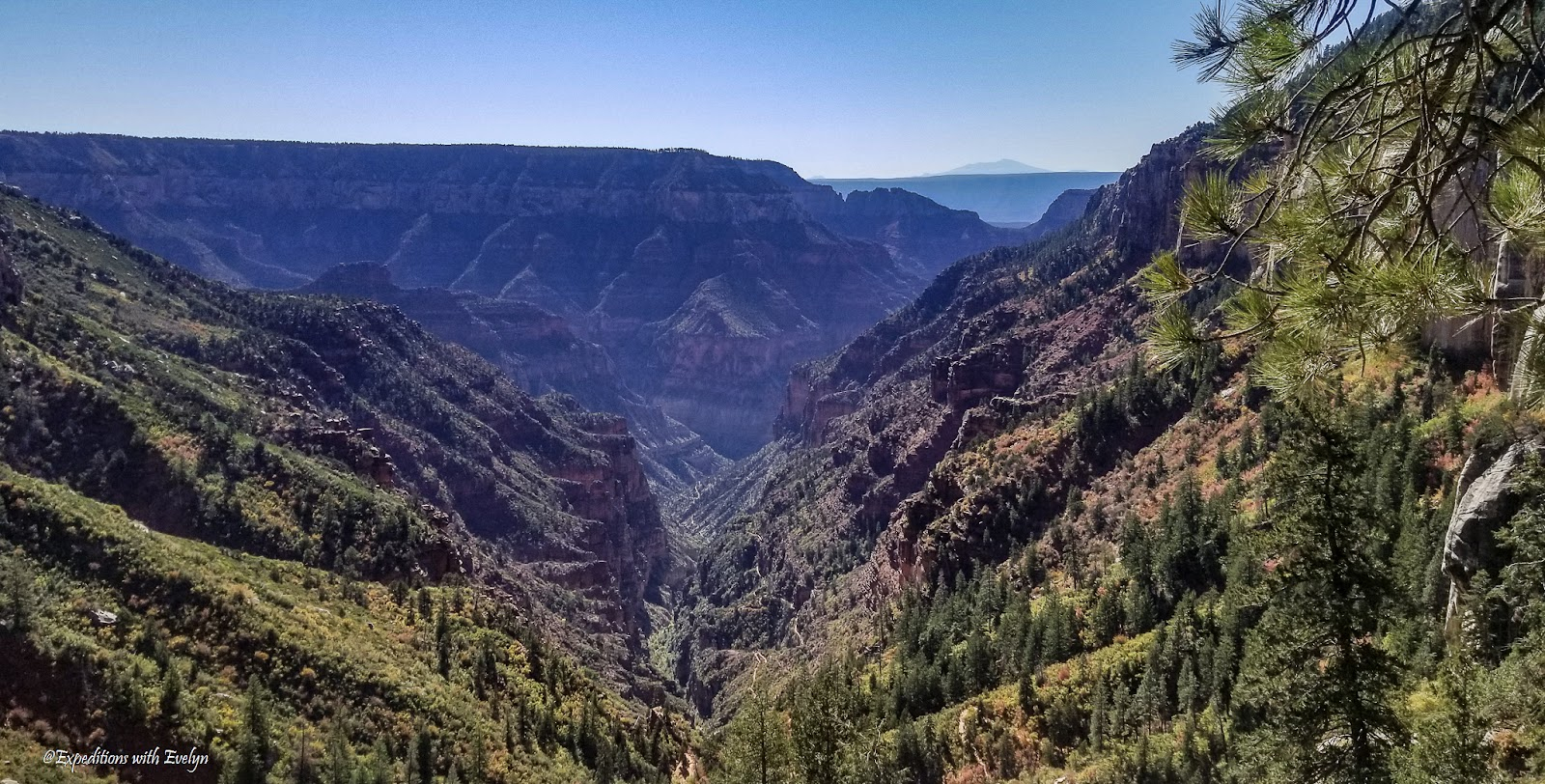 Hiking in national parks is shown by the North Kaibab Trail curving its way down the conifer-dotted landscape into the Grand Canyon.