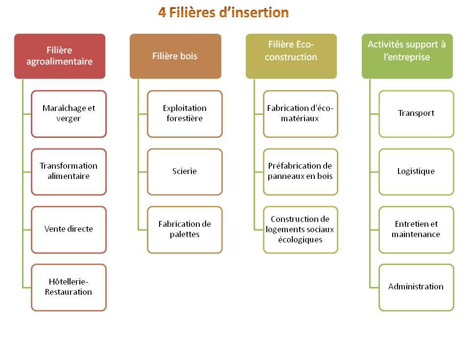 schéma filières.jpg