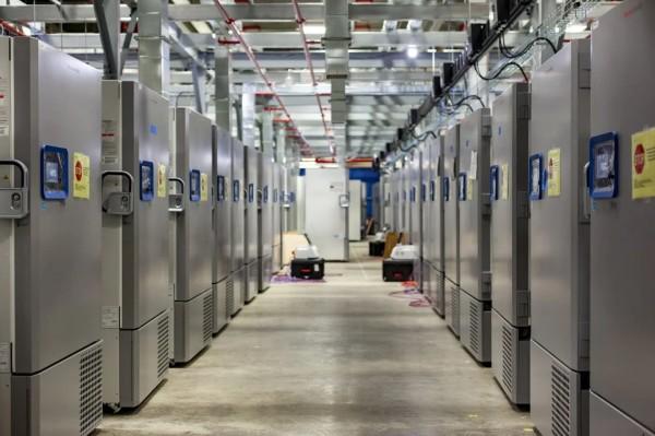 Nhà máy sản xuất thuốc của Pfizer ở Michigan đang xây dựng một nhà kho vaccine Covid-19 lớn, được lưu trữ ở nhiệt độ khoảng -70 độ C.