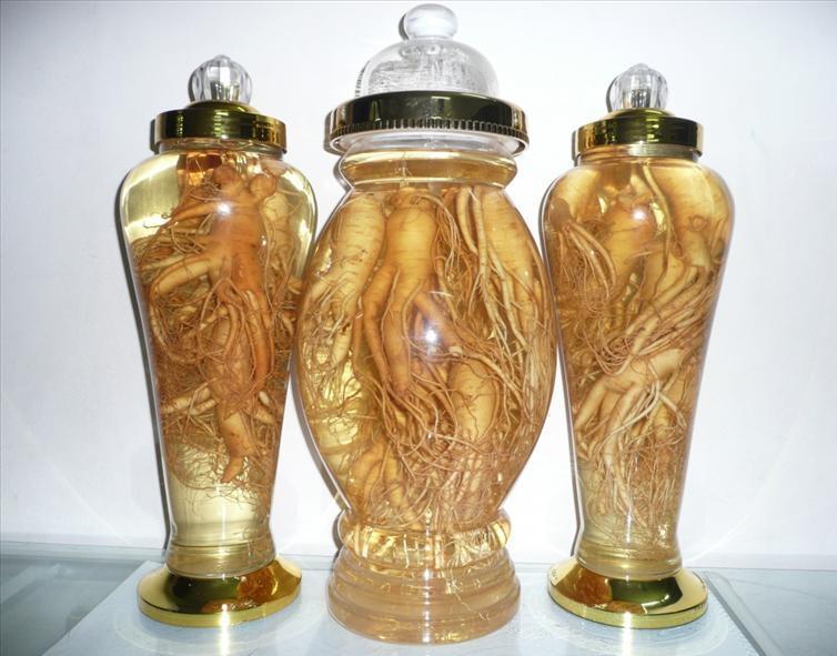 Rượu sâm, một trong những sản phẩm từ sâm được mọi người ưa chuộng và tin dùng