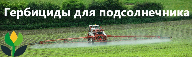 гербициды для подсолнуха