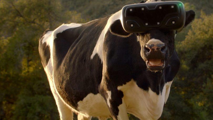 Resultado de imagen para cow vr