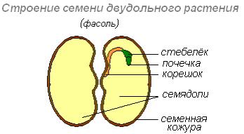 3_html_46b9f6f4png