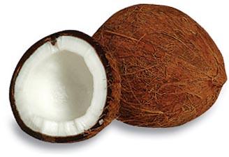 cliparti1_coconut-clip-art_08.jpg