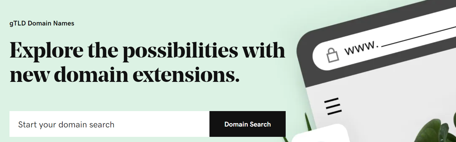 searching domain on Godaddy
