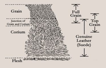 Leather Buyer's Guide | What are Leather Grades Full Grain