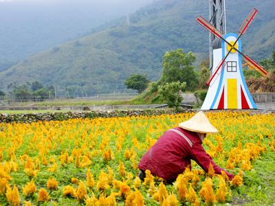 Taiwan Tour Holiday Vacation - Taitung