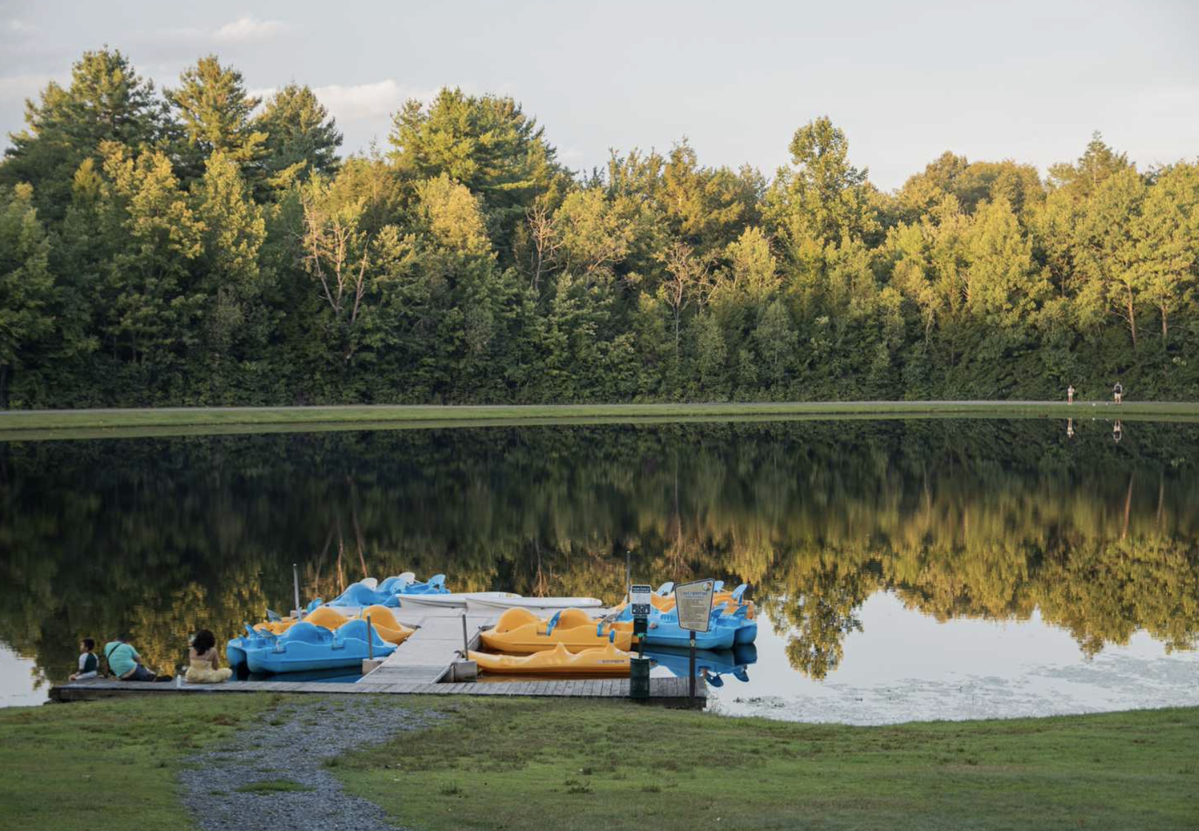 Paddle boards in lake during golden hour at campground