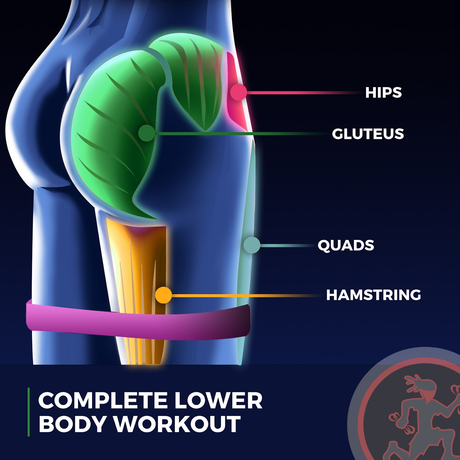 """bdd20ec3d Booty bands are 12"""" long latex mini bands. They are used to rapidly  activate your glutes and engage your hips through an array of lower body  exercises."""