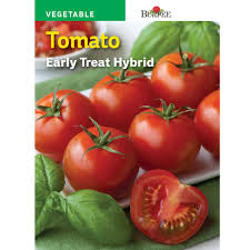 Shows seed packet for early treat hybrid tomato.
