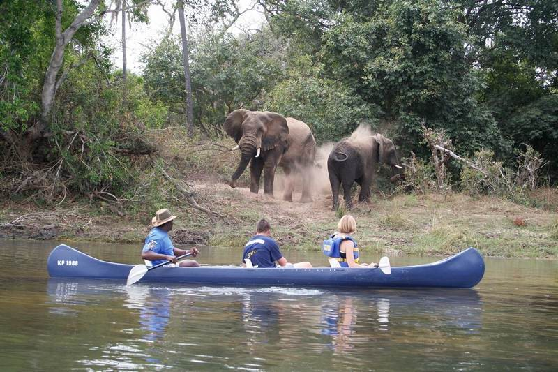 canoe-upper-winedrift-ellies.jpg