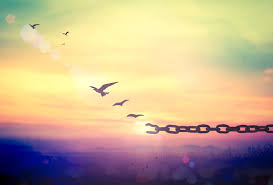 Let It Go: Benefits of Forgiveness   The Aviary Recovery Center