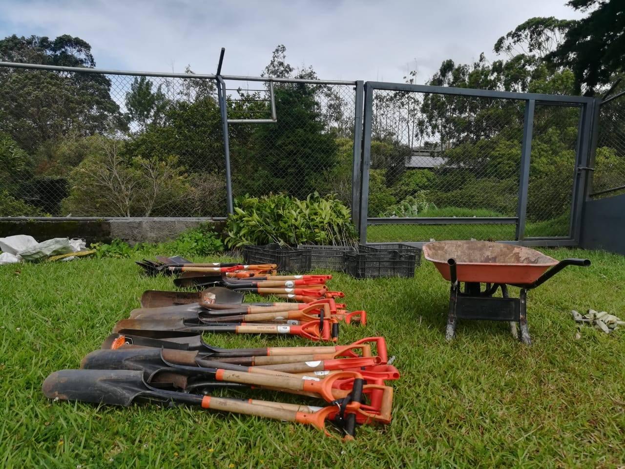 palas-terreno-reforestar