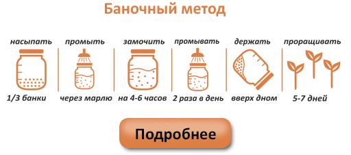brukva_metod.png