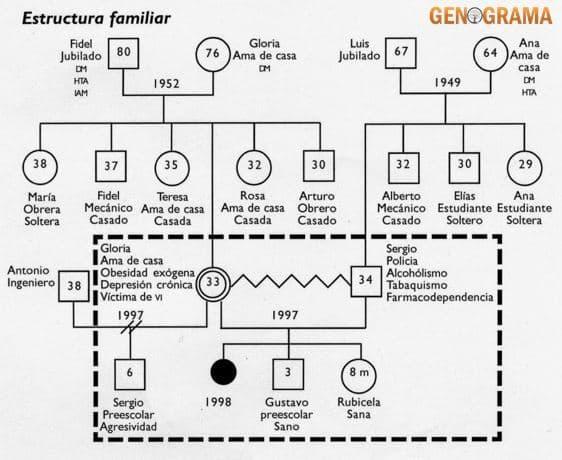 ▷ Cómo hacer un familiograma Familiar Facil 2020 🥇Genograma.top