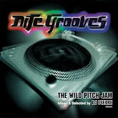 The Wild Pitch Jam Mixed & Selected by DJ Pierre