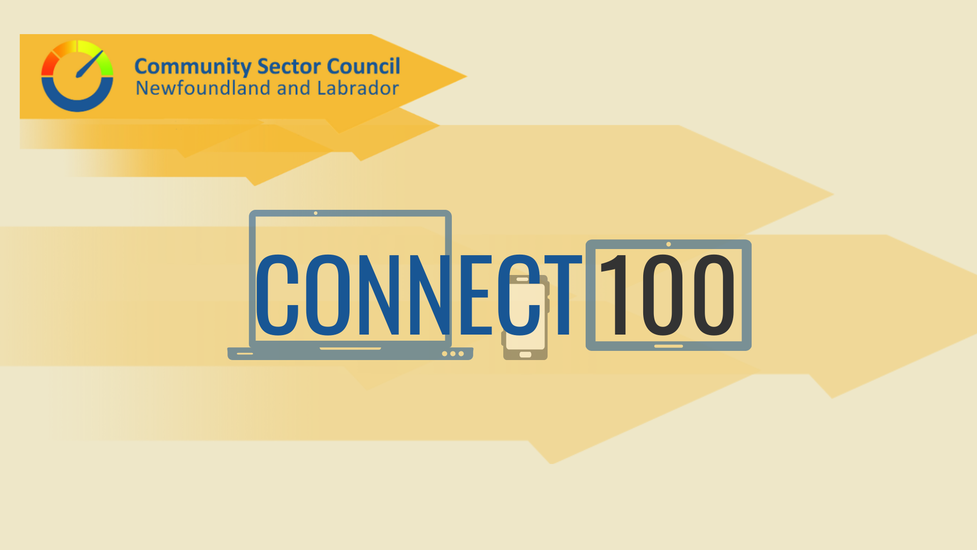 http://communitysector.nl.ca/connect100