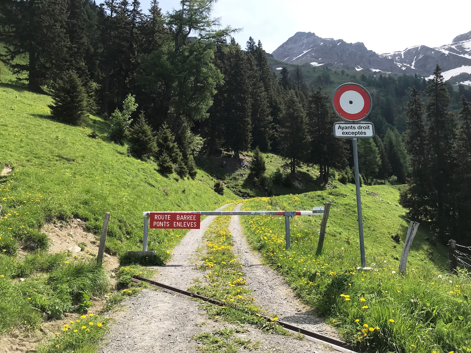 Bicycle climb of Rionda - gate on gravel road