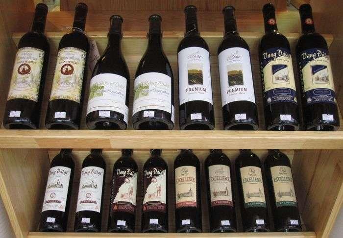 Rượu vang đà lạt có điểm gì nổi bật so với các dòng rượu vang trên thế giới?