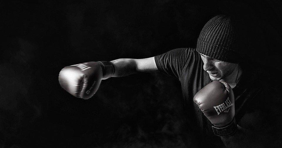 Box, Sport, Men, Training, Male, People, Person, Boxer
