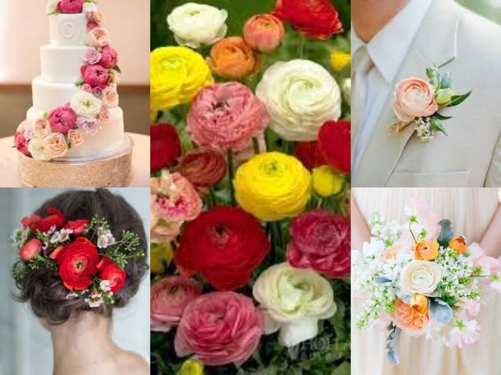 Flower Blog - Floral Ideas and Arrangements | Avas Flowers
