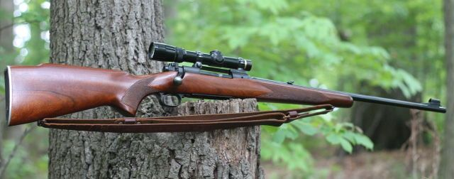 winchester model 70 chambered in .308